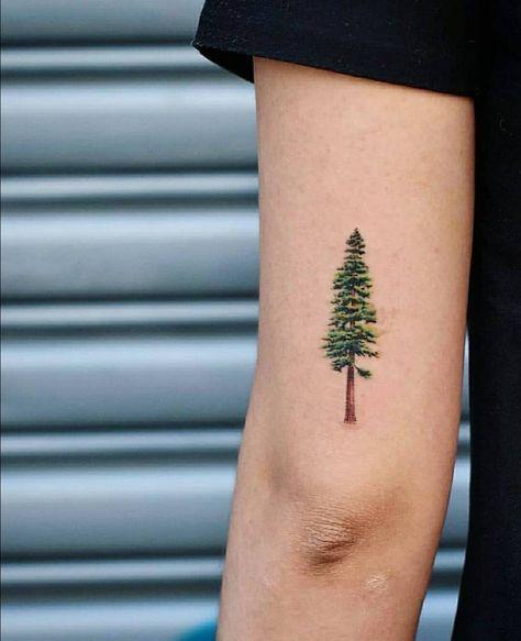 Evergreen Tree Tattoo : evergreen, tattoo, Ideas, Evergreen, Tattoo, Tiny#evergreen, #ideas, #tattoo, #tiny, Tree#evergreen, #tatt…, Tattoo,, Small,, Finger