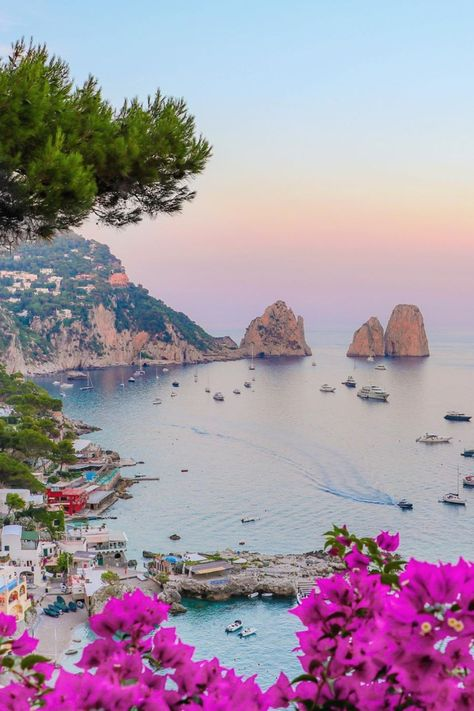 Amalfi Coast Tours in south of Italy by locals. Discover the Amalfi Coast with us by visiting places like Amalfi, Ravello, Capri, Positano.