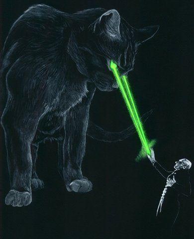 Laser Cat Target Practice Cat Laser Cats Classic Paintings