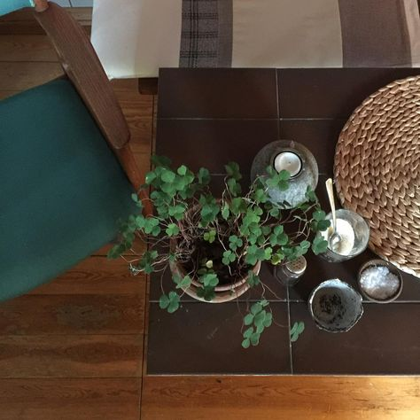 creativeliving Green friday at the old school...