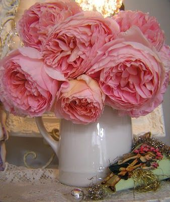 Abraham Darby by David Austen, but don't they look like peonies?