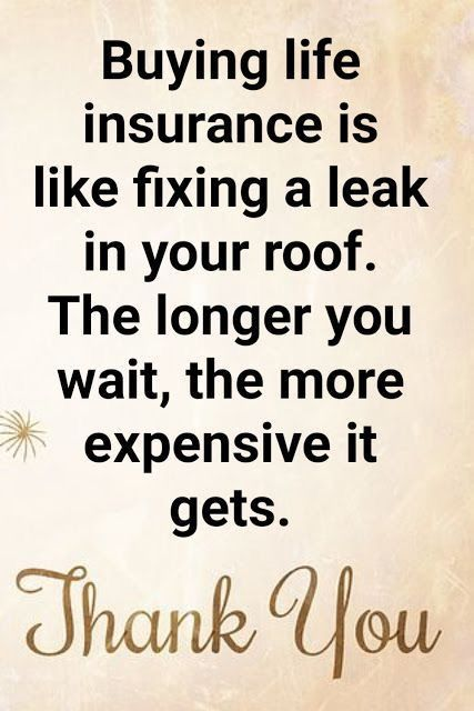 Pin By Nasha Green On Primerica Life Insurance Quotes Life