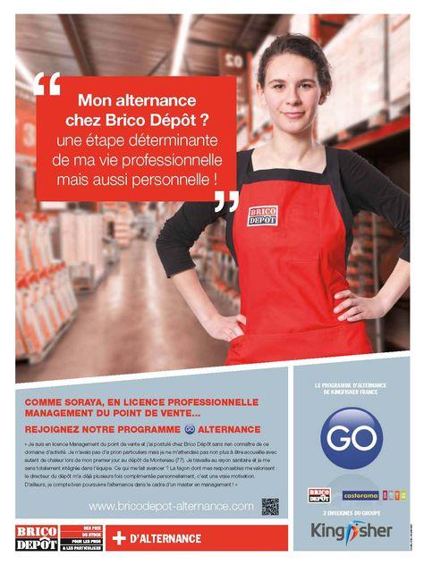 best 25+ brico depot france ideas on pinterest   14 juillet france