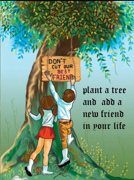 Pin By Amiiit Purri On 666a Tree Drawing Tree Quotes Save Trees
