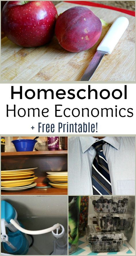 Thinking about adding homeschool home economics to your school list? Don't miss these important life skills and this printable checklist for homeschool home economics! Homeschool High School, Homeschool Curriculum, Online Homeschooling, School Kids, Economics Lessons, Teaching Economics, Life Skills Class, After High School, Middle School