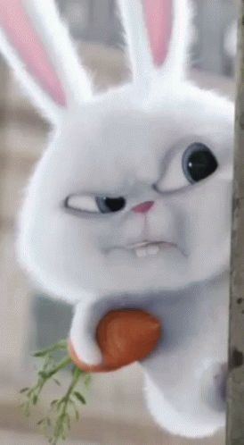 Rabbit Frown GIF - Rabbit Frown - Discover & Share GIFs