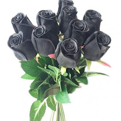 Seven Ideas To Organize Your Own Real Black Roses Real Black Roses Https Ift Tt 2nn96wu Real Black Roses Black Roses Wallpaper Black Rose Bouquet