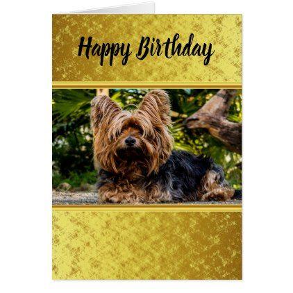 Adorable Sweet Yorkshire Terrier Gold Foil Design Card Zazzle Com Gold Foil Design Yorkshire Terrier Terrier