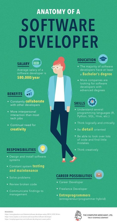 Anatomy Of A Software Developer Infographic - e-Learning Infographics