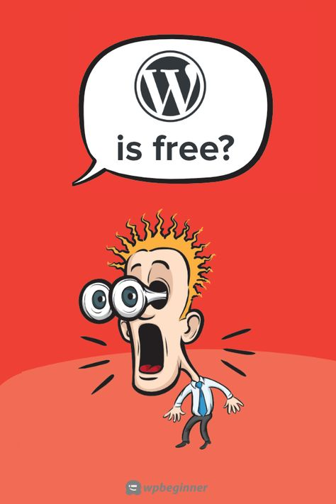 Why is WordPress Free? What are the Costs? What is the Catch?