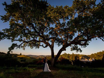 The Highlands Estate Weddings Wine Country Wedding Venue
