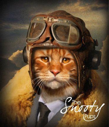 e634b3f6ccc1 Custom Cat Portrait, Pilot Cat portrait, Cat Portrait, Cat Portrait ...