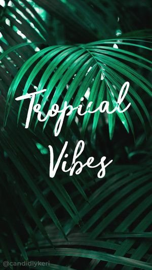 Tropical Vibes Summer Palm Trees Palms Typography Inspirational Motivational Quote B Inspirational Desktop Wallpaper Quote Backgrounds Desktop Wallpaper Summer