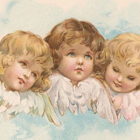 sweet little vintage angel faces Images Victoriennes, Angel Images, Angel Pictures, Angel Aesthetic, Aesthetic Art, Vintage Illustration, Etiquette Vintage, Angel Art, Renaissance Art