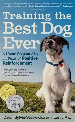 Dog Training Hattiesburg Ms Dog Training Vest Harness Pitbull