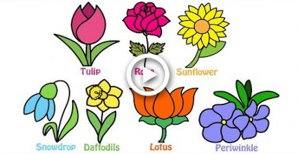 How To Draw And Colouring Flowers For Kids Learn Flower Names In English Flower Drawing Simple Flower Drawing Flower Drawing For Kids