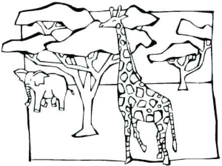 Coloring Animal Coloring Pages Pics Photos Savanna Animals Page Zoo Animal Coloring Pages Animal Coloring Pages Savanna Animals