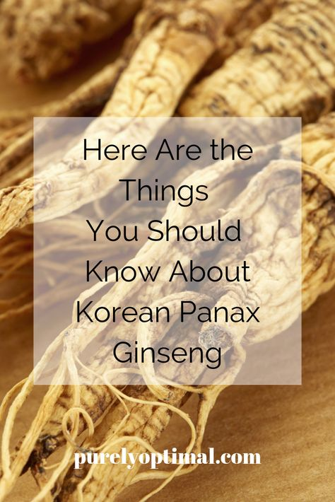 Here are the things you should know about Korean Panax ginseng -- its classifications and the fantastic benefits it can bring to your health and well-being.  #koreanpanaxginseng #koreanpanaxginsengsupplements #panaxginsengbenefits #ginsengbenefits