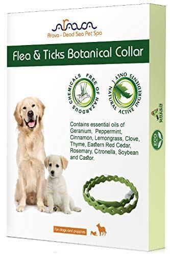 Arava Flea Amp Tick Prevention Collar For Dogs Amp Puppies With Images Tick Prevention Dogs And Puppies Fleas