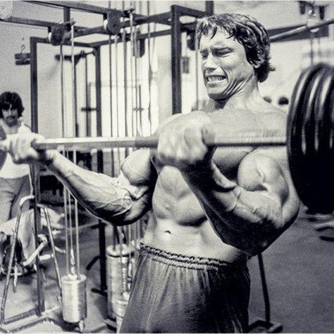 Arnold schwarzeneggers blueprint to cut bodybuilder arnold arnold schwarzeneggers blueprint to cut malvernweather Gallery