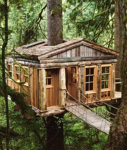Treehouse Rentals Nc