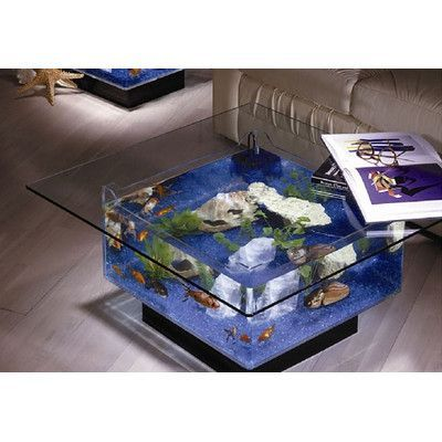 All about Aquarium in brief; An aquarium is a nice addition to decorate your home. The design of the aquarium, the plants and the colors of the fish of your aquarium a true centerpiece. Fish Tank Table, Fish Tank Coffee Table, Coffee Tables, Fish Tank Bed, Tropical Aquarium, Aquarium Fish, Glass Aquarium, Fish Aquariums, Aquarium Lighting