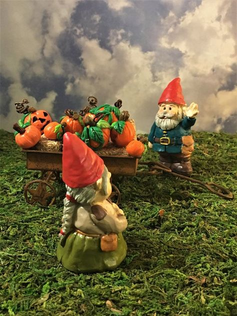 Gnorman The Butterfly Gnome Miniature Dollhouse FAIRY GARDEN Accessories