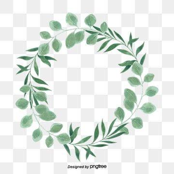 17 Eucalyptus Wreath Png Wreath Illustration Wreath Watercolor Silver Dollar Eucalyptus