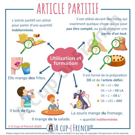 French partitive article