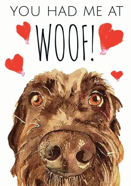 Thortful An Awesome Anniversary Card From Jo Scott Art In 2021 Dog Lovers Art Dog Valentine Cards Dog Greeting Cards