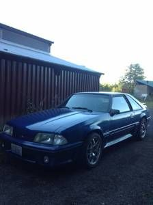 9 Best Mustangs For Sale Images Mustang Mustang For Sale Mustangs