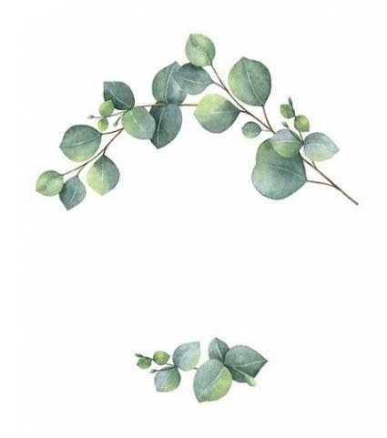 Eucalyptus Leaves Vector Watercolor Wreath 4