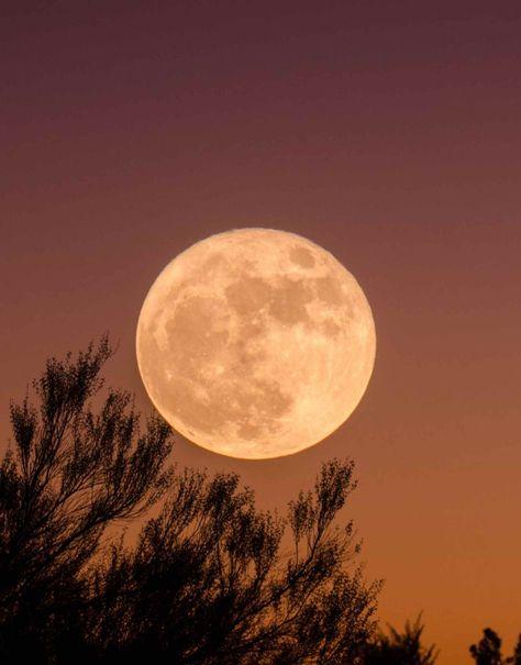 Mondphasen Bedeutung
