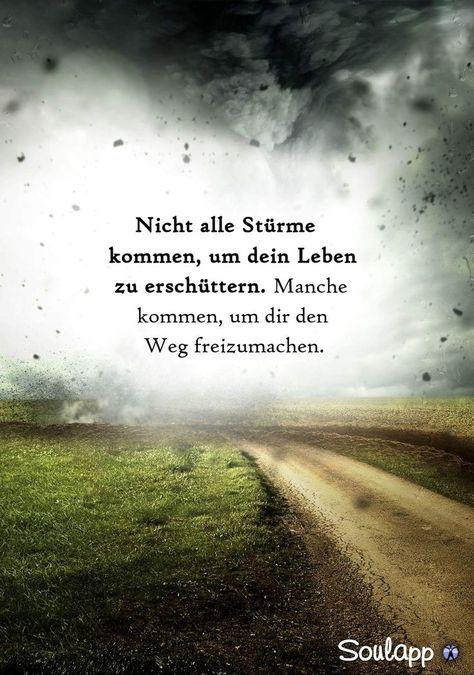 Und steh dazu, geh weiter mit deinem vergatschten ... - #dazu #deinem #geh #mit #neue #steh #und #vergatschten #weiter
