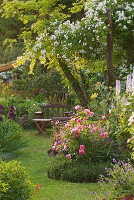 Cottage inspired backyard and garden. A great space = if you don't have large dogs! :-)