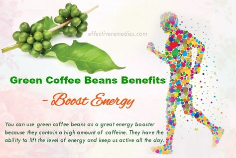 Do You Know Science Based Green Coffee Beans Benefits For Health