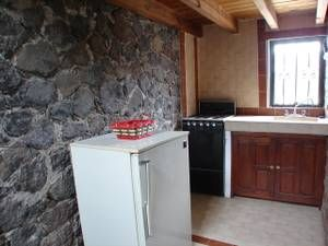 guanajuato apts/housing for rent