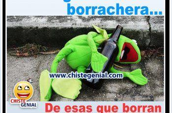 Borracho Rana Rene Rana Rene Frases Dejar De Beber