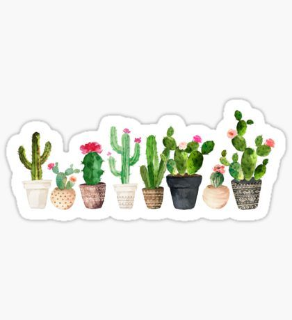 Trending stickers planners cacti and bullet