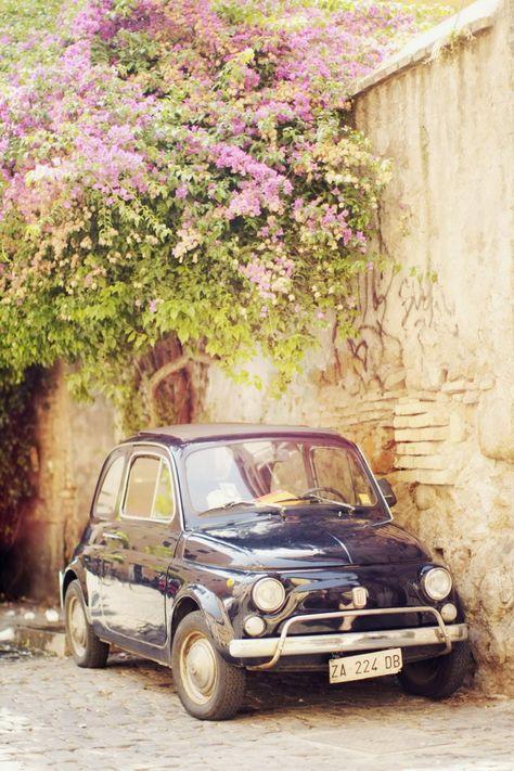 #Fiat500 rétro et brillante se fondant parfaitement dans un décor fleuri et romantique ! Louez une Fiat 500 d'époque sur Drivy : https://www.drivy.com/location-voiture/france/type/collection