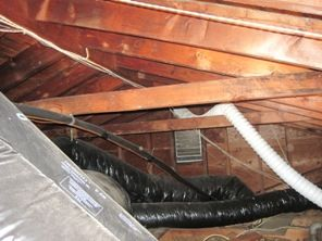 Attic Mold Story Attic Mold Removal From Start To Finish With Pictures Mold Remover Molding Mold Remediation