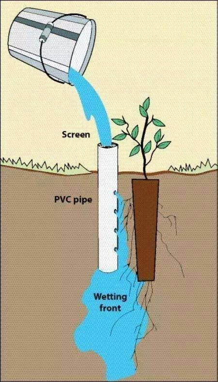 Pvc Watering System With Images Diy Garden Projects