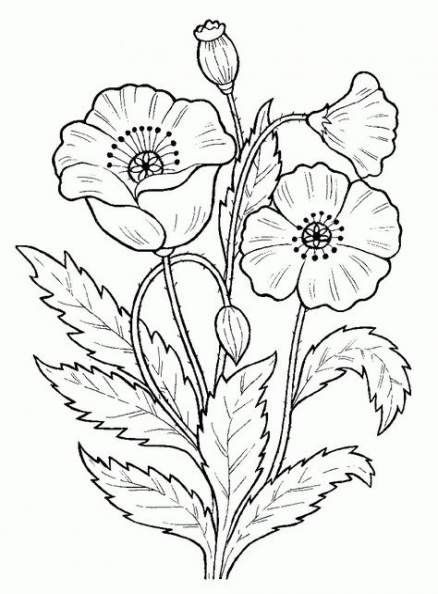 41 Trendy Design To Draw Patterns Flowers Coloring Pages Flowers