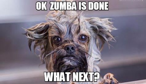 Funny Memes Zumba : Best zumba quotes images zumba quotes zumba