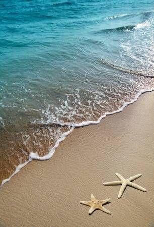 Starfish On A Beach Sand Beach Wallpaper Ocean Wallpaper Beach Scenes