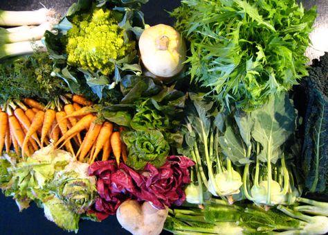 Top 20 vegetables to grow in Autumn/winter-Planning fall garden vegetables