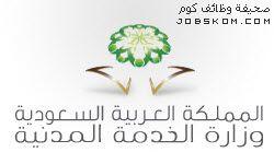 نموذج سيرة ذاتية وورد مختصرة Doc عربي وانجليزي Crown Pattern Cartoon Songs Pattern