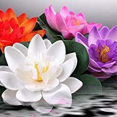 Lotus Flowers Meanings Artificial Garden Plants Artificial