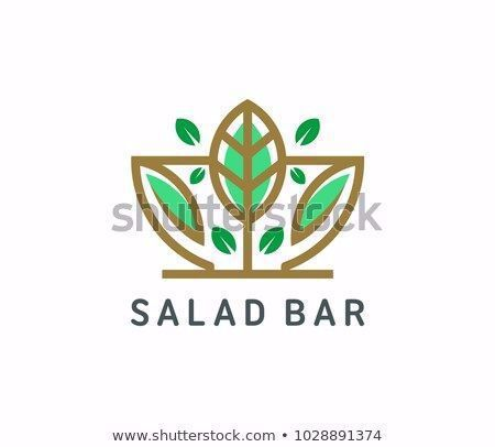 Organic salad logo template vector illustration  #abstract #art #bar #bowl #business #cooking #delicious #design #diet #dish #eating #eco #element #farm #fitness #food #fork #fresh #graphic #green #health #healthy #icon #illustration #isolated #label #leaf #lifestyle #like #logo #lunch #meal #menu #natural #nature #nutrition #organic #plant #product #professional #restaurant #salad #sign #symbol #template #vector #vegan #vegetable #vegetarian