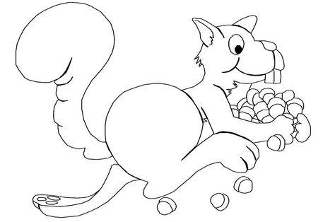 Desenho De Esquilo Para Colorir Esquilos Desenho Desenhos E Colorir